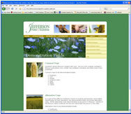 Website Design for Jefferson Institute