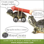 CEO-turtle-ad