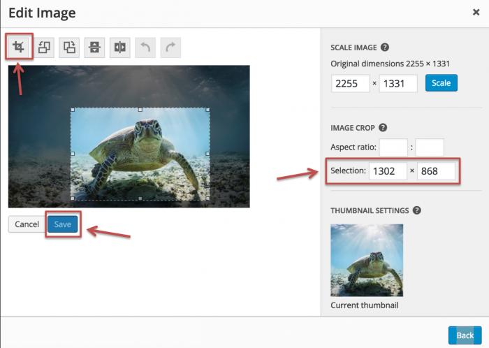 Crop Image in WordPress