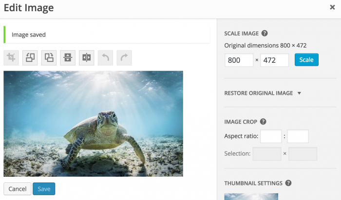 Edit Image Dimensions in WordPress