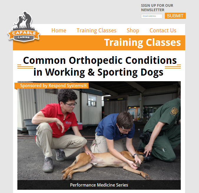 Capable Canine's Updated Training Class Pages