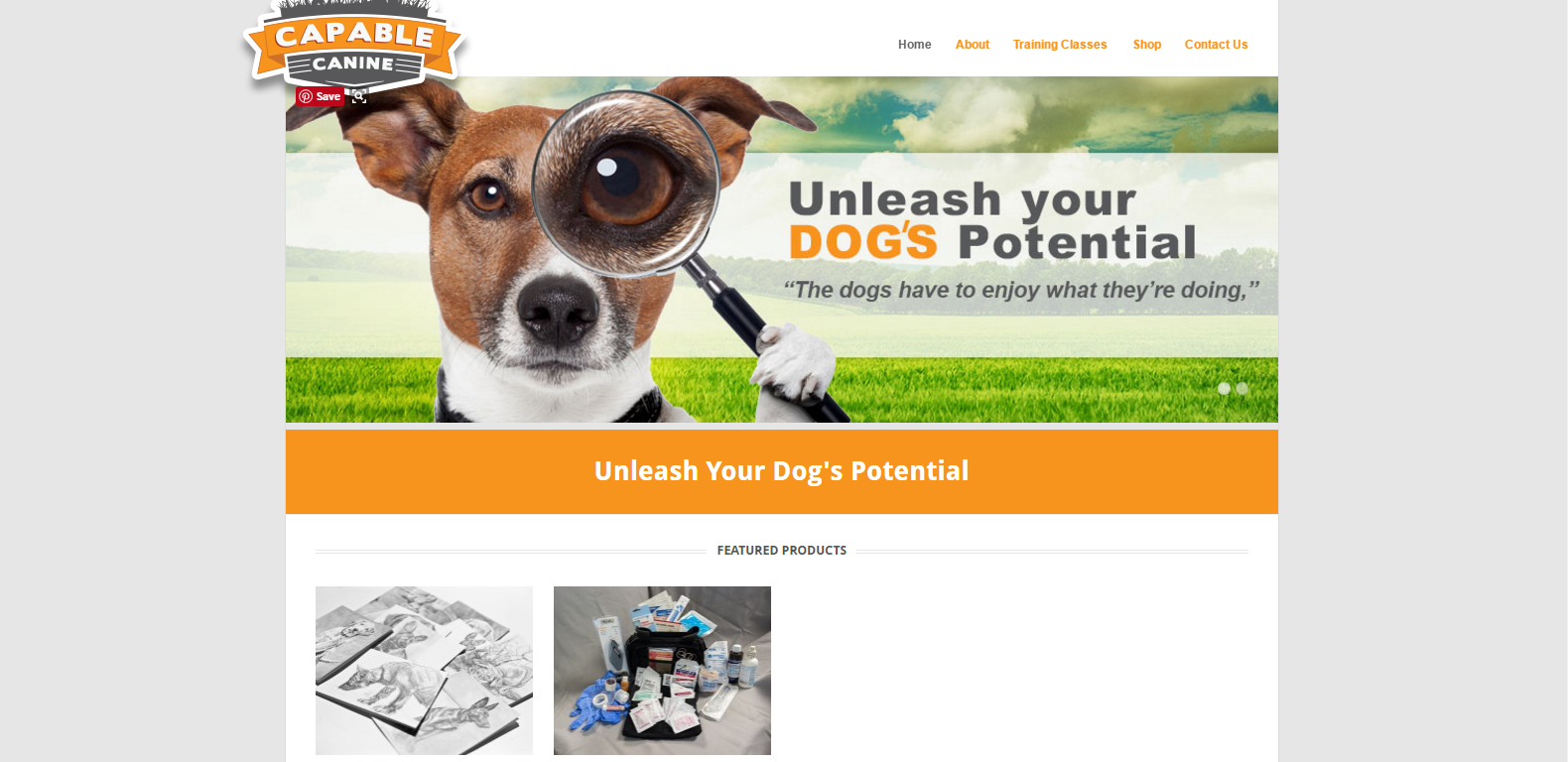 Capable Canine's Updated Website Home Page