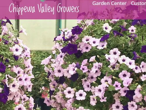 The New Chippewa Valley Growers Website is in Full Bloom